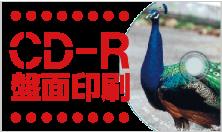 CD-R盤面印刷
